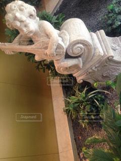 庭の植物の写真・画像素材[750689]