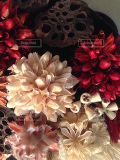近くの花のアップの写真・画像素材[750690]