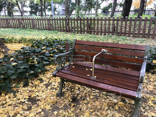 木製フェンスの上に座って空の公園ベンチの写真・画像素材[901934]