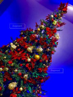 クリスマス ツリーの写真・画像素材[923091]