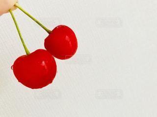 近くに赤い果実の - No.1252744