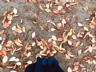 靴の山の写真・画像素材[1614325]