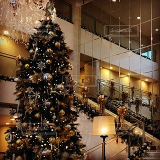 部屋のクリスマス ツリーの写真・画像素材[1619428]