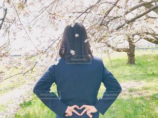 草の中に立っている女性の写真・画像素材[3118226]