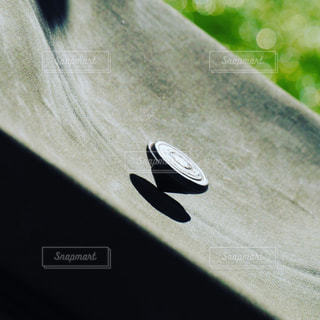 閉じるの写真・画像素材[549012]