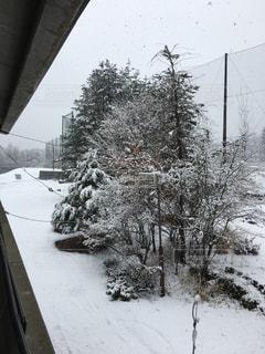 雪 - No.524732