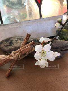 梅と流木とシナモンと…の写真・画像素材[1040332]