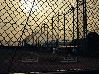 野球の写真・画像素材[524832]