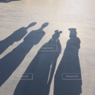 学生の写真・画像素材[528035]
