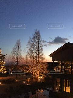 夕日の写真・画像素材[528368]