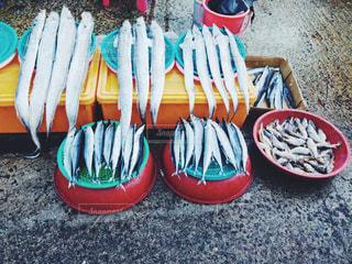 韓国の写真・画像素材[529177]