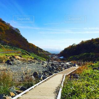 山の側に木がある小道の写真・画像素材[2685696]