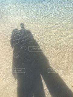 砂浜の写真・画像素材[525750]
