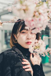 桜の写真・画像素材[1397260]