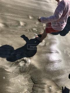 砂浜の写真・画像素材[526567]