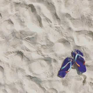 夏の写真・画像素材[536423]