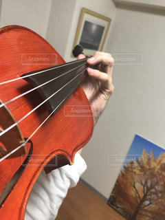 バイオリンの写真・画像素材[559248]