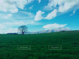 自然の写真・画像素材[529440]