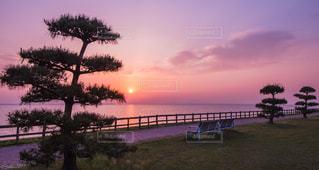 夜景 - No.531106