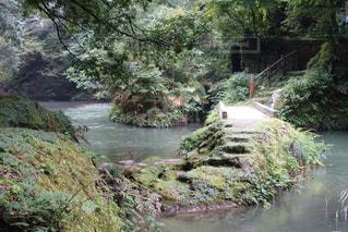 加賀温泉にて散歩した時の写真の写真・画像素材[1315191]