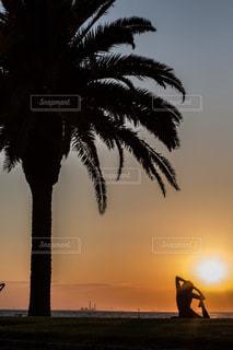 ヤシの木のあるビーチでヨガの写真・画像素材[1315283]