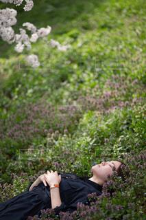 緑の中で眠るの写真・画像素材[1320807]