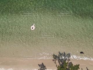 ビーチ上空からの写真・画像素材[1320816]