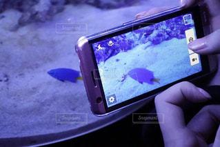 近くに携帯電話を持つ手のアップの写真・画像素材[1320983]