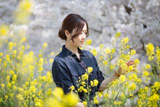 菜の花を見にの写真・画像素材[1321011]