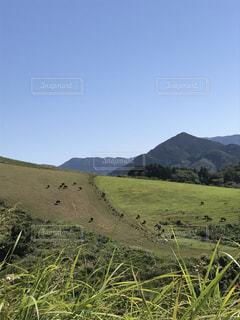 放牧地と空の写真・画像素材[1287197]