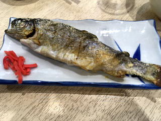 魚 - No.604814