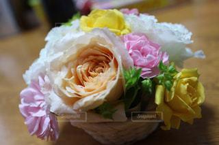 花の写真・画像素材[531898]