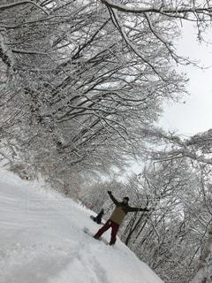 冬の写真・画像素材[532065]
