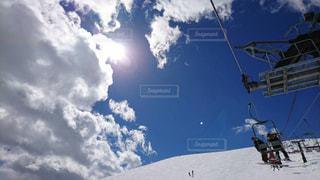スキーの写真・画像素材[532069]