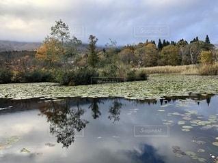 自然の風景の写真・画像素材[2697971]