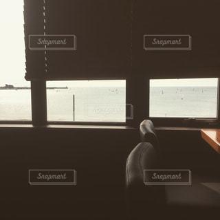 窓の前に座っている男の写真・画像素材[844810]