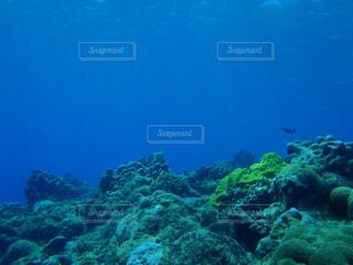 海の写真・画像素材[561022]