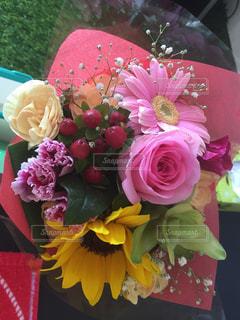花の写真・画像素材[562116]