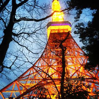 東京タワー - No.540407