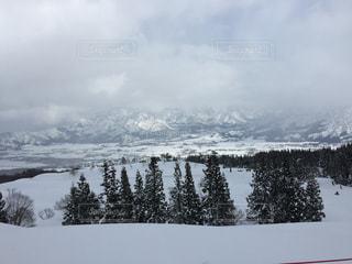 雪の写真・画像素材[538357]