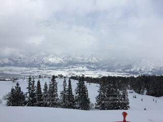 雪の写真・画像素材[538358]