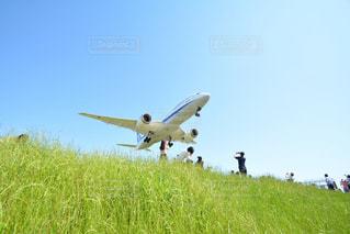 芝生のフィールド上空を飛ぶ飛行機の写真・画像素材[1219703]