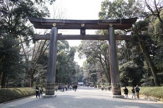 東京の写真・画像素材[538495]