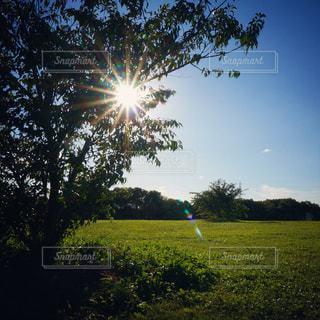 公園 - No.538843