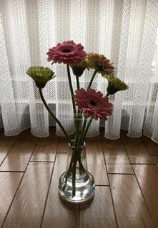 花瓶のガーベラの写真・画像素材[1039925]