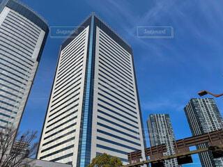 豊洲の高層ビルの写真・画像素材[4215229]
