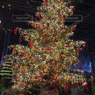 デンパークのクリスマスイルミネーションです。の写真・画像素材[756662]