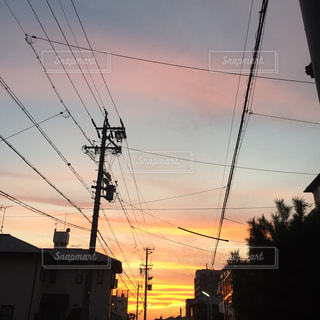 夕方散歩の写真・画像素材[763792]