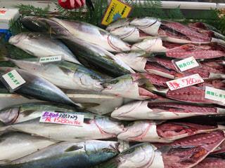 魚売り場の写真です。の写真・画像素材[847146]