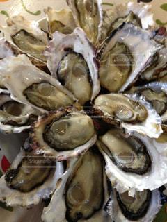 牡蠣の写真・画像素材[541694]